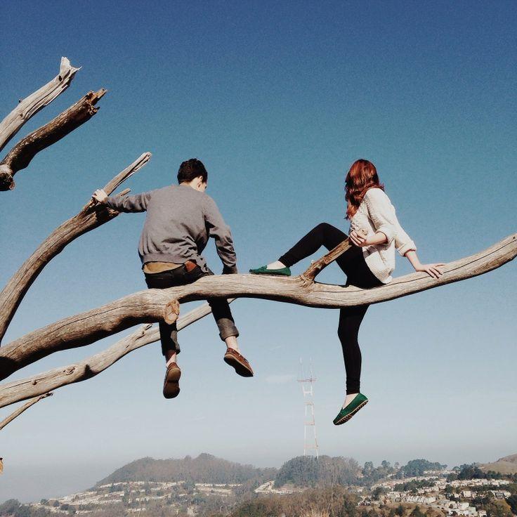 San Francisco - Mount Davidson. #ThatSFTree arbre au haut du Mont Davidson, la plus haute colline de San Francisco.