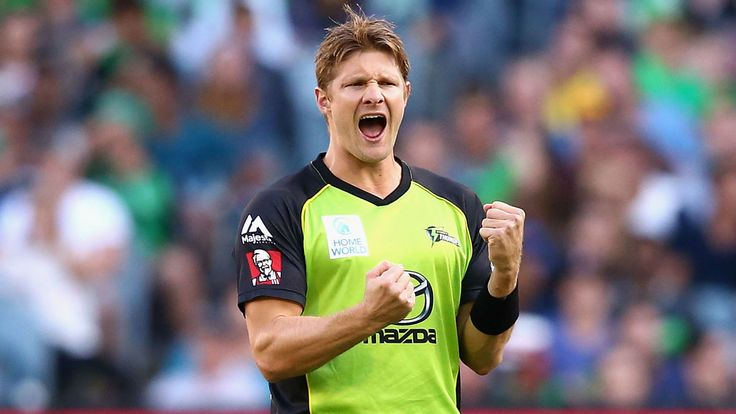 Shane Watson HD Wallpapers : Get Free top quality Shane Watson HD Wallpapers for your desktop PC background, ios or android mobile phones at WOWHDBackgrounds.com  #ShaneWatsonHDWallpapers #ShaneWatson #cricket #wallpapers