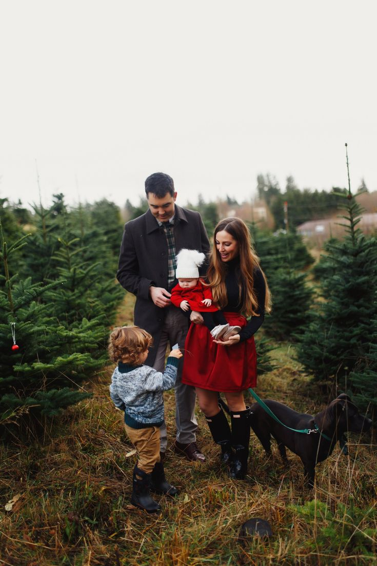 Photos Taken At A Christmas Tree Farm On Beautiful Bainbridge Island WA In The Pacific Northwest Holiday Outfit Ideas For Whole Family