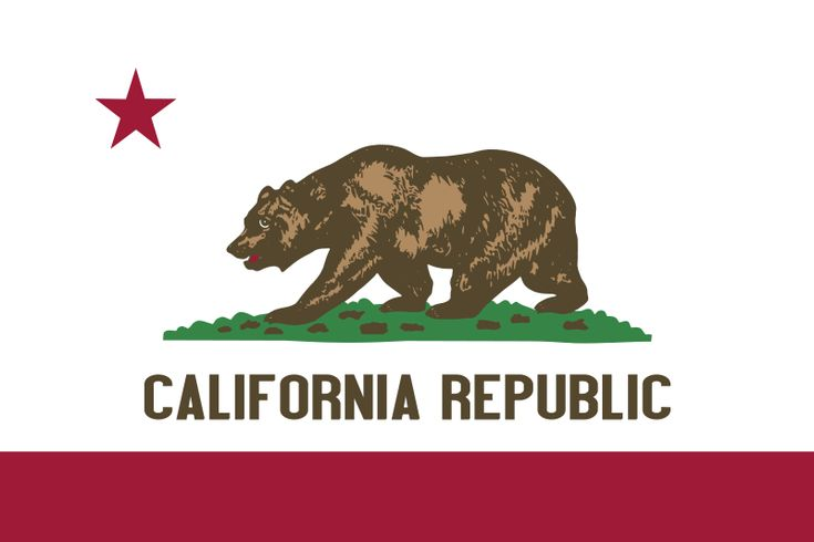 Great state to live in - California Republic - love this flag too!