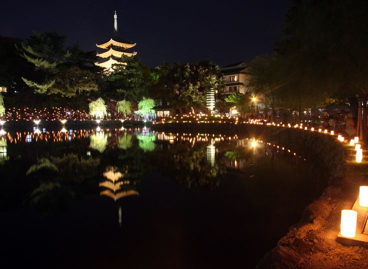 奈良公園 なら燈花会(とうかえ) 猿沢の池 : 魅せられて大和路
