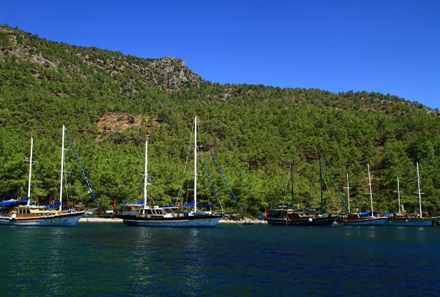 Day 7: AKVARYUM – BODRUM For the customs we will enter the port of Turkey. We will have a swimming break at the beautiful waters of Akvaryum(Aquarium) where you can see the fish swimming below you . We will be staying at Bodrum Harbour for dinner and our final overnight stay.