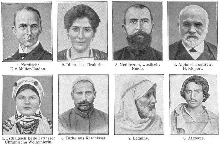 the caucasian race early theories: 1. Nordic, 2 Dinaric 3 Mediteranean Westisch 4 Alpine Ostisch 5 Ostbaltisch Ukrainische 6 Turk 7. Bedouin 8 Afghan