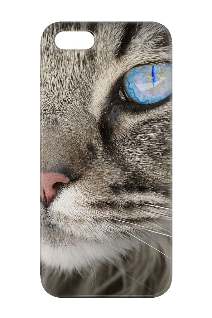 Blue Eyed Fluffy Cat Phone Cover