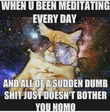 Need to start meditating again....