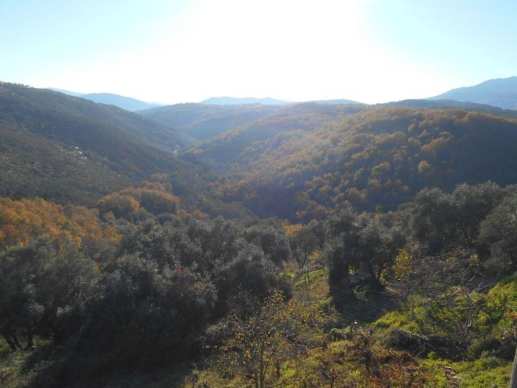 Panorámica Valle del Rio Francia desde mirador de terraza
