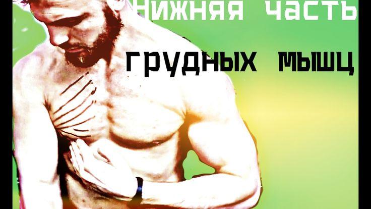 Нижняя часть грудных мышц (скажи нет обвисшей груди)