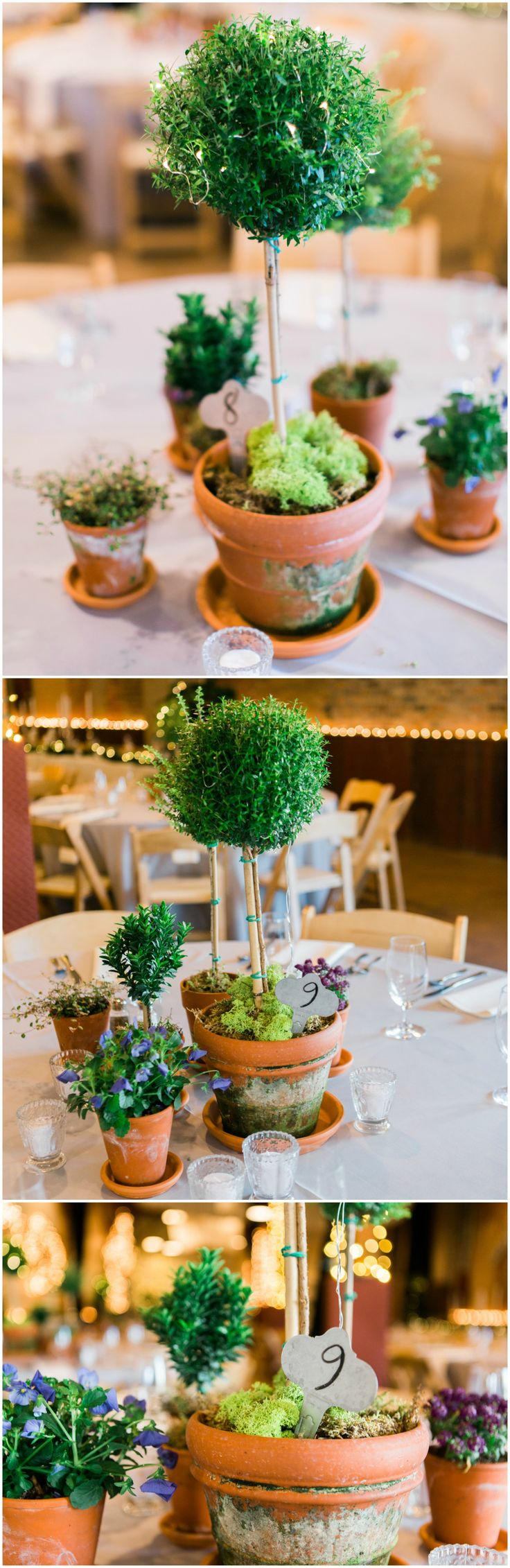 Mini potted topiaries, wedding reception centerpiece ideas, natural decor, handwritten table numbers, white candles // Rachel Osborn Photography