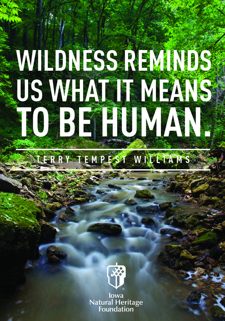 terry tempest williams essay The metaphysics of ecofeminist essayism: intra-acting with the essays of  rebecca solnit & terry tempest williams camp, audrey jean master thesis.