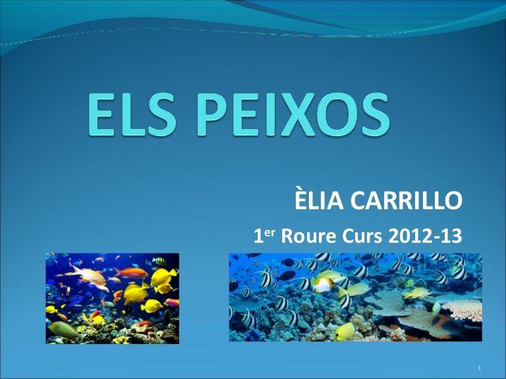 ÈLIA CARRILLO1er Roure Curs 2012-13                         1