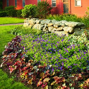 109 best images about landscaping ideas on pinterest for Landscaping rocks daytona beach