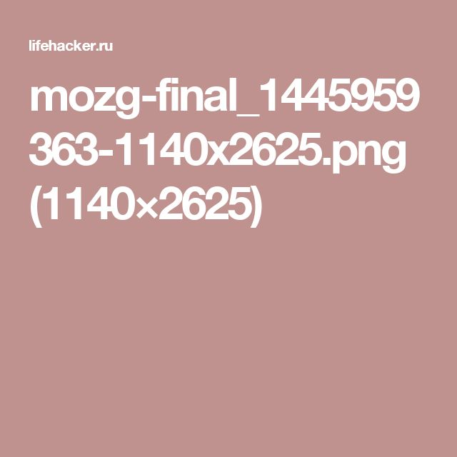 mozg-final_1445959363-1140x2625.png (1140×2625)