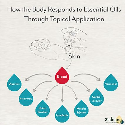 How the body responds to essential oils through topical application.  great chart!  And be sure to watch the video, too.
