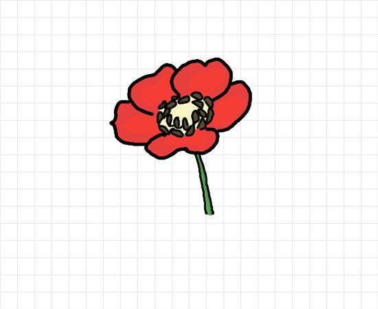 How to draw a poppy flower flowerpower pinterest how for Poppy drawing step by step