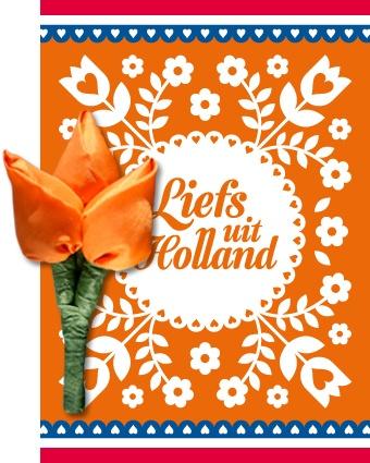 Postkaart Holland & Tulp corsage www.hipenstipkaarten.nl