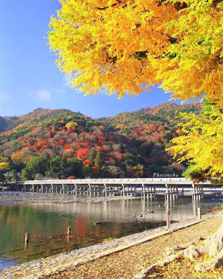 . . あきいろ . . . . 嵐山にて . . . Location:Kyoto,Japan #wp_japan #東京カメラ部 #team_jp_西 #phos_japan #lovers_nippon #IGersJP #lovers_nippon_2017秋コン #ファインダー越しの私の世界 #写真好きな人と繋がりたい #けしからん風景 #キタムラ写真投稿 #bestjapanpics_紅葉2017 #japan_daytime_view #bestjapanpics #tokyocameraclub #s_shot #team_jp_ #art_of_japan_ #instagramjapan #土曜日の小旅行 #photo_jpn #wp_flower #japan_of_insta #wu_japan #photo_shorttrip #はなまっぷ紅葉2017 #team_jp_秋色2017 #はなまっぷ #kyoto