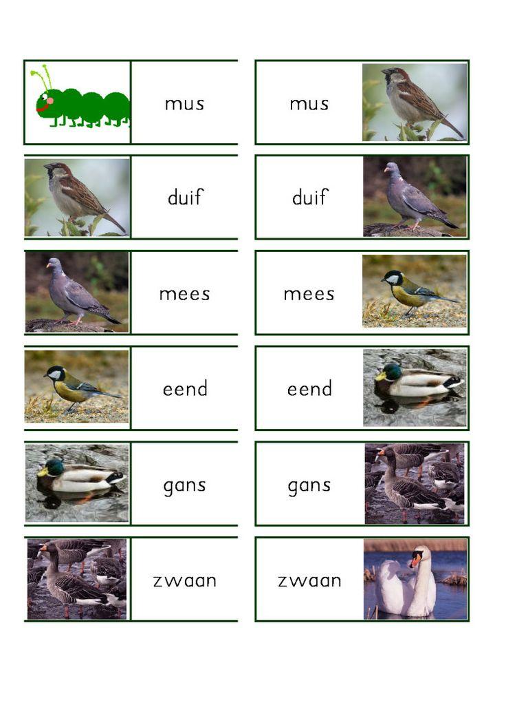 leesrups vogels - MontessoriNet
