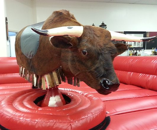 Ride on a mechanical bull - DONE!