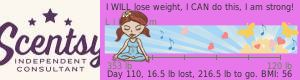 LilySlim Weight loss ticker