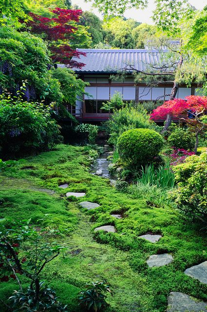 garden, Kyoto