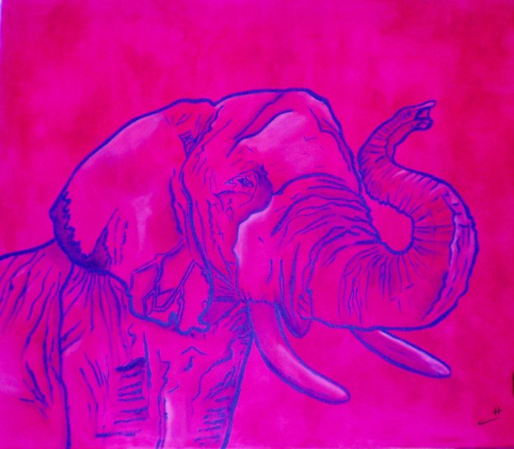 """Elephant"" Acrylics on canvas    100x80 By Chicca Savino"