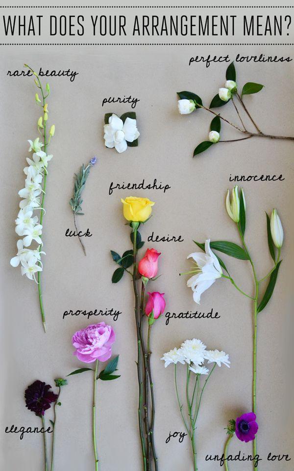 Anemone – unfading love; anticipation Camellia – perfect loveliness Chrysanthemum – joy; optimism Dahlia – elegance; dignity Gardenia – purity Lavender – luck Lily (white) –innocence; purity Orchid – rare beauty; luxury Peony –Prosperity; bashfulness Rose (pink) –gratitude; admiration Rose (coral or orange) – desire Rose (yellow) – friendship
