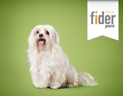 "Check out new work on my @Behance portfolio: ""Animals - Labyes / Fider"" http://on.be.net/1IjMzxU"