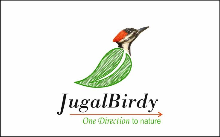 An exhibition of drawings, paintings & photographs of birds in their natural habitat. JUGALBirdy's purpose is to focus on the depleting biodiversity of Ahmedabad & surrounding regions and bring awareness among the fellow citizens to create a green environment. #Events #Ahmedabad #kanoriya #Nature #photography #visualArts