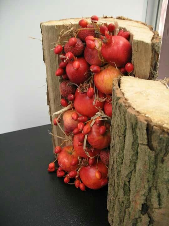 Früchtestamm