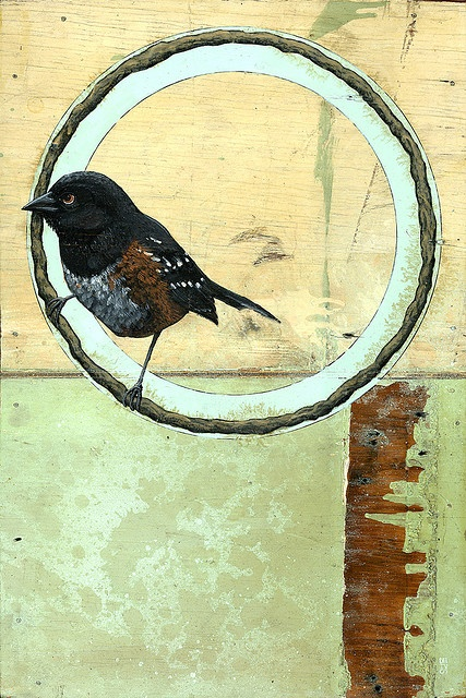 Latex, acrylic, spray paint, shellac, varnish, India Ink, tar, on reclaimed board: India Ink, Bird Paintings, Compound Gallery, Acrylic, Painting Birds, Hayes Iv, Photo, Dennis Hayes
