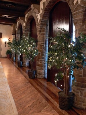How To String Lights On A Ficus Tree : 17 Best images about Wedding - Decor Ideas on Pinterest Football, Receptions and Floral headbands