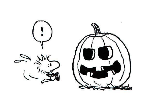 Snoopy Friend Woodstock Looking At Halloween Pumpkin ...