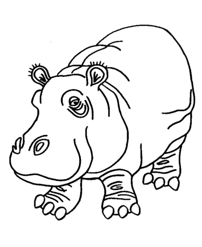 Pink Hippo coloring page | Hippopotamus Coloring page