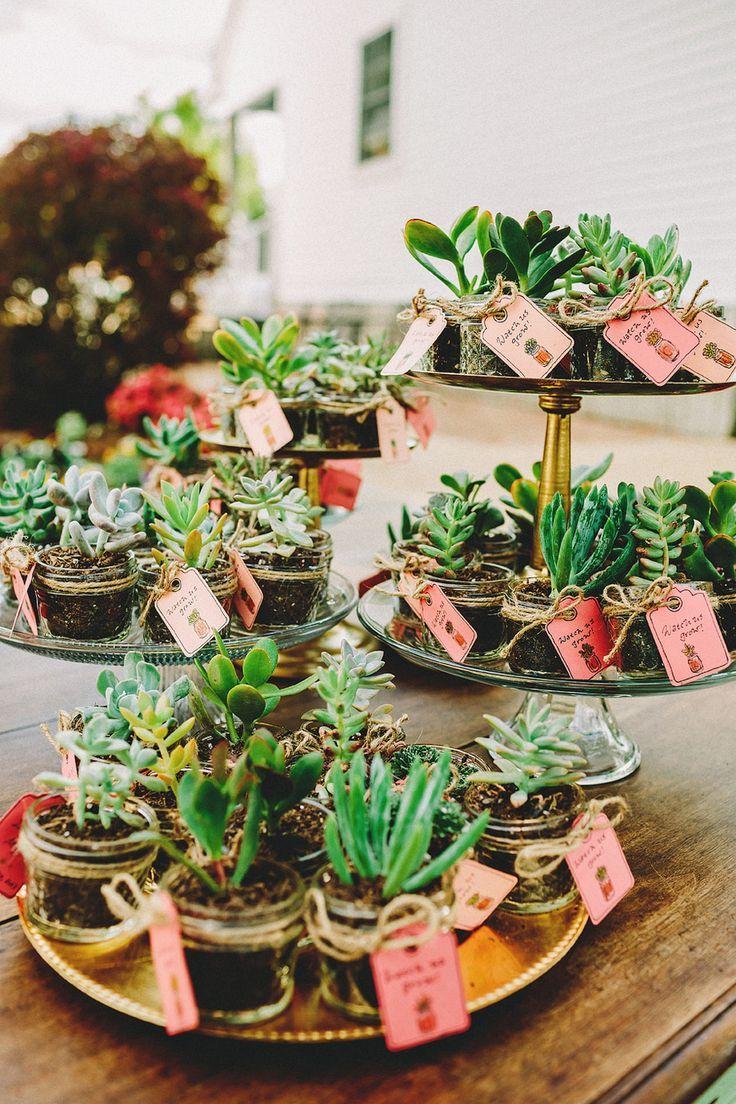 Plantas como recuerdos de boda. Agradéceles a los invitados por su presencia con obsequios originales | 7 ideas de recuerdos para bodas