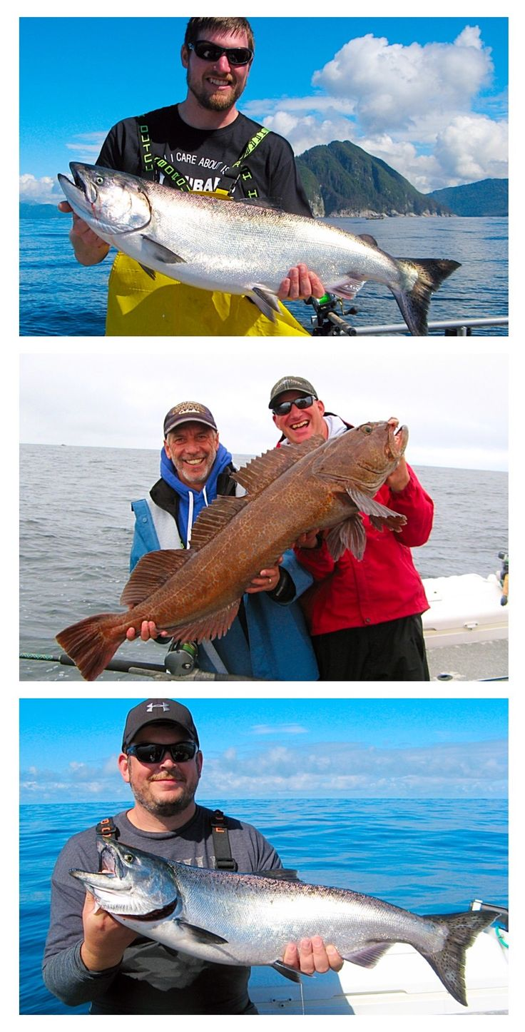 57 best images about sitka fishing reports on pinterest for Sitka fishing report