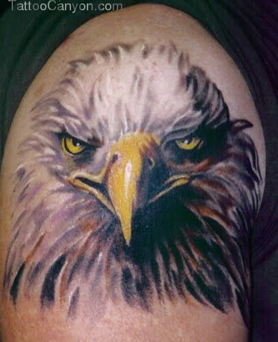 Eagle Head Tattoo Design Picture Gallery  Ideas picture 18633