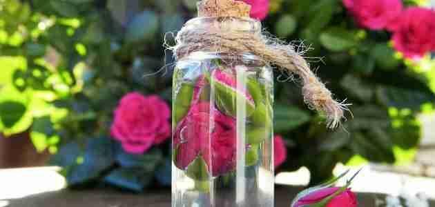 فوائد ماء الزهر ملكة المطبخ 3 زاكي Organic Roses Uses For Rose Water Rose Water