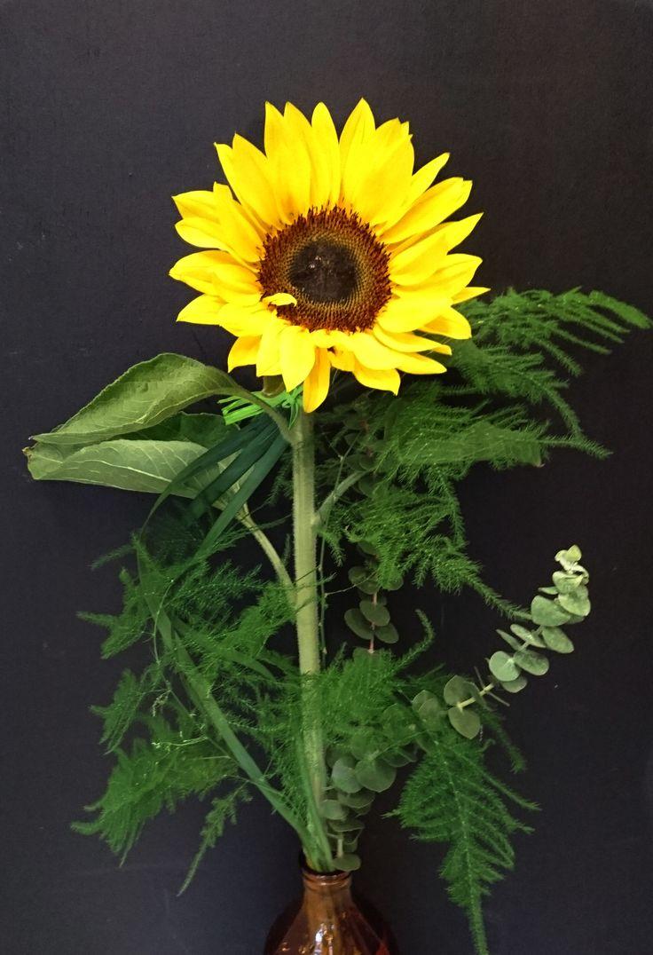 Auringonkukka #Sunflower