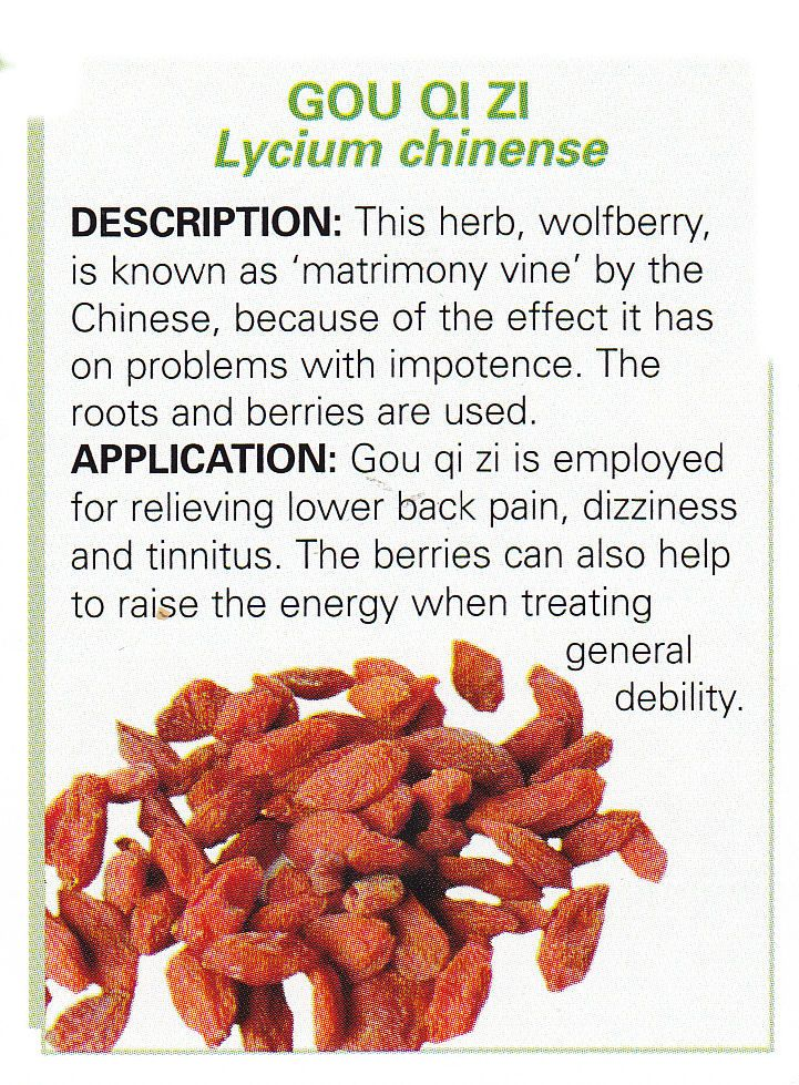 Chinese herbs - GOU QI ZI - Lycium chinense  Wolfberry known as the matrimony vine