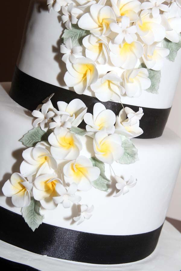 2 Tiered Wedding Cake