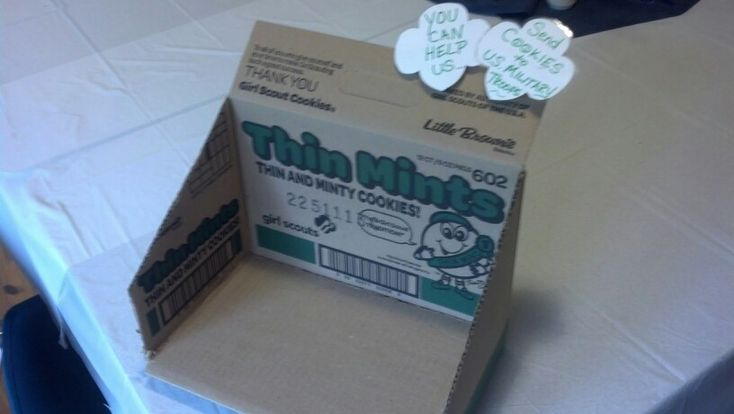 Recycling girl scout cookie cases. Use for display on cookie booth sale table? Put cookie in it or put donation jar underneath Trefoils?
