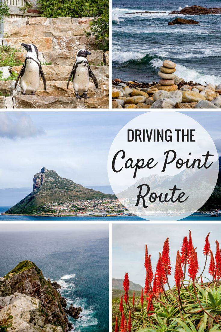 Driving South Africa's Cape Point Route includes stunning views and stops at…