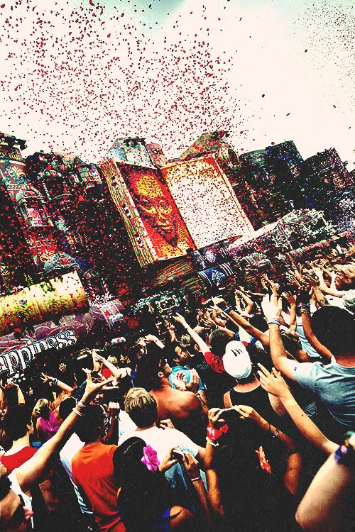 Tomorrowland #edm #perfection.... I will go... One day... One day
