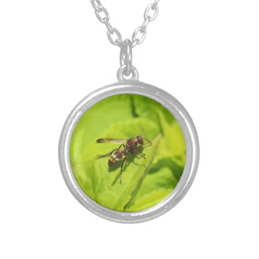 Vespidea paper/Potter wasp necklace.
