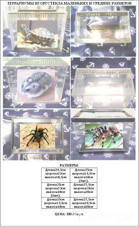 Продаю террариумы из оргстекла небольших размеров для: хомяков, морских свинок, пауков, улиток, сухопутных черепах... Цена:100-300грн.