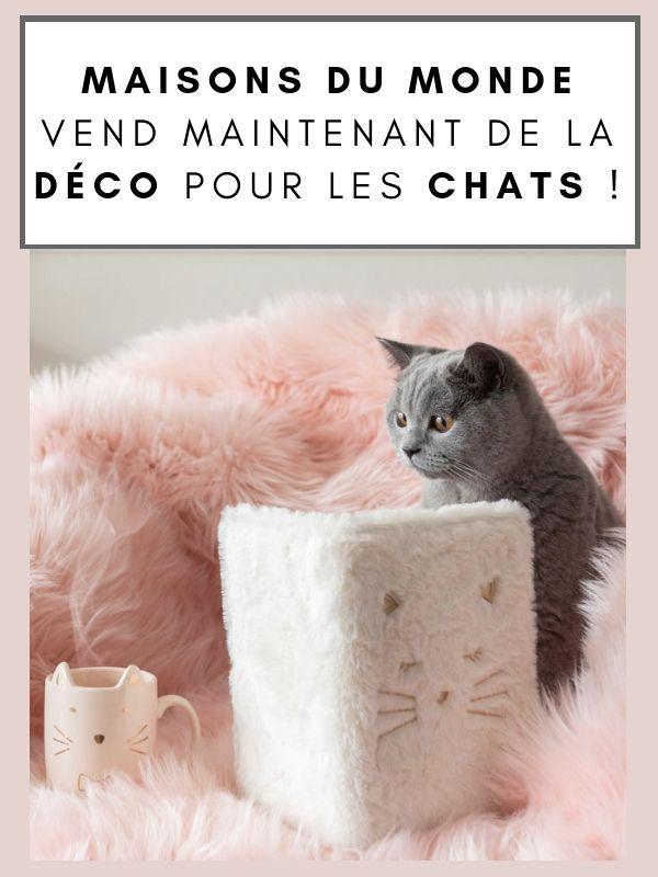 Mug Chat Maison Du Monde : maison, monde, Maisons, Monde, Maintenant, Déco, Chats, Chiens, Maison, Monde,, Chat,, Chien