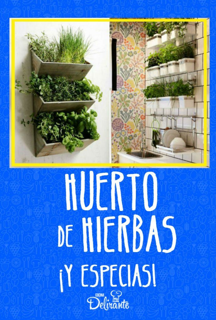 6 Ideas Para Realizar Un Huerto De Hierbas Y Especias En Tu Cocina Jardín De Hierbas Interior Jardines Colgantes Jardín De Vegetales