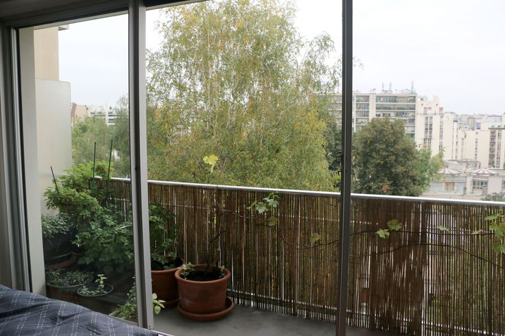 A few steps from Jasmin Metro (line 9), in a luxury building with caretaker and digital lock on the 6th floor with elevator, large studio of 40, 80 m2 with balcony on garden and without vis-à-vis, light, and offering spacious: with storage entrance, main room 23 m2, separated 7 m2 with washing machine and dryer kitchen, balcony 7 m2, bathroom with bath 5 m2. Heating and hot water collective. No loss of space, very quiet, green surroundings. This apartment has an area of 33, 80 square meters…