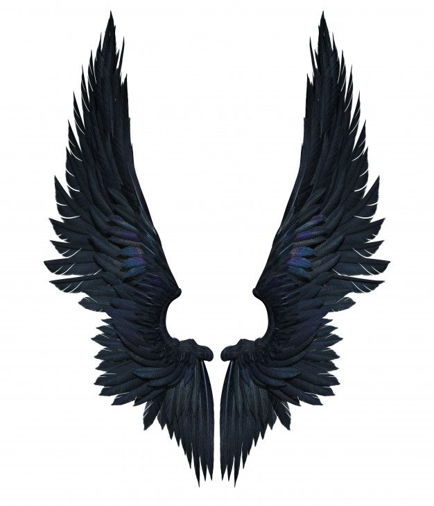 Discover Thousands Of Premium Stock Photos Availables In Jpg Format With High Quality Download Whatever Cancel Demon Wings Angel Wings Drawing Wings Drawing Black devil wings wallpaper