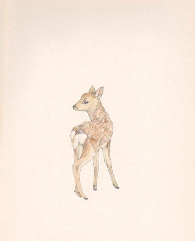 Картинки из тамблера животные